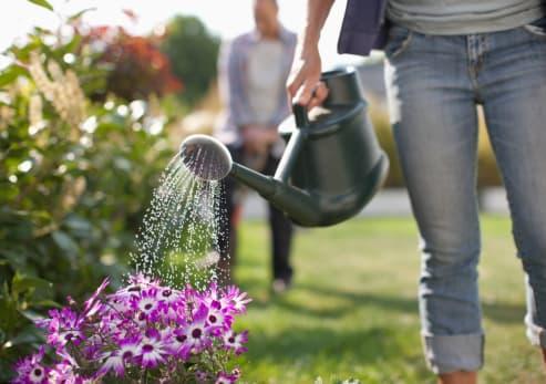 garden-watering